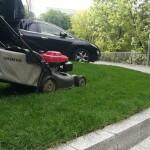 Kaip tinkamai prižiūrėti veją